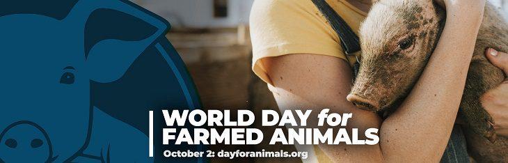 afbeelding versterkt werelddag voor landbouwdieren